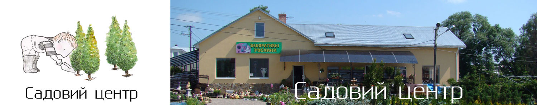 Садовий центр Декоративні рослини